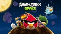 """Наклейки на NB Angry Birds, 15,6"""""""